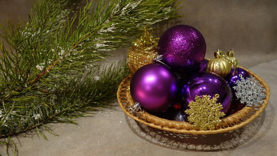 Сосну Палласа хотят выращивать в Крыму к новогодним праздникам