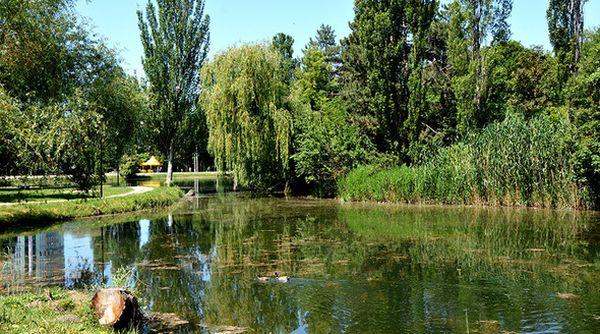 В пруду Гагаринского парка Симферополя обнаружили труп