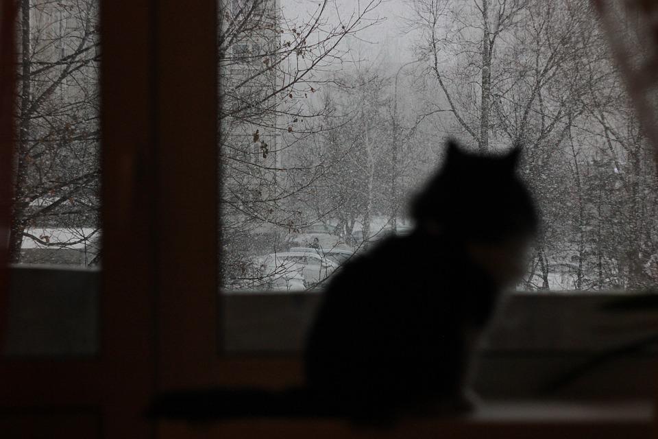 В ближайшую неделю отопление в Крыму включать не будут