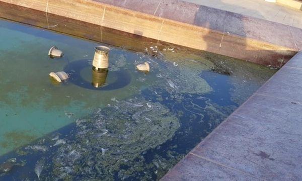 Фонтан в Парке Победы превращается в болото