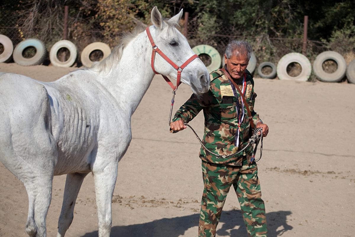 Путешественник из Сирии верхом на лошади добрался до России