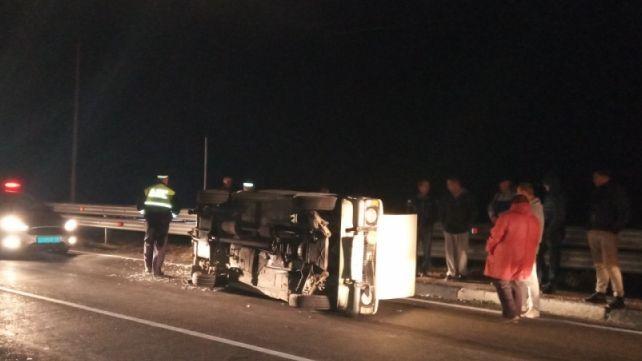 Дикий кабан устроил ДТП на трассе Ялта-Севастополь