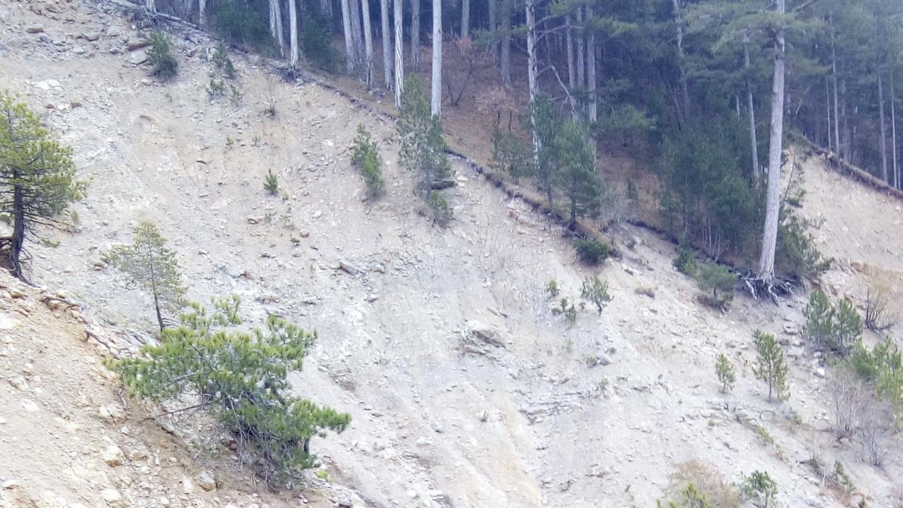 В Крымских горах эвакуировали туриста