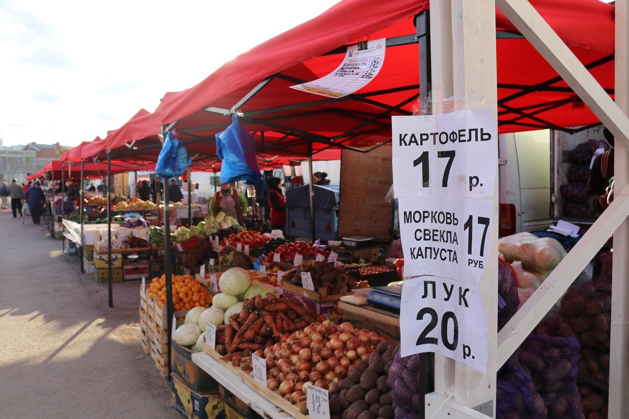 В Севастополе открылась урожайная ярмарка — цены, ассортимент