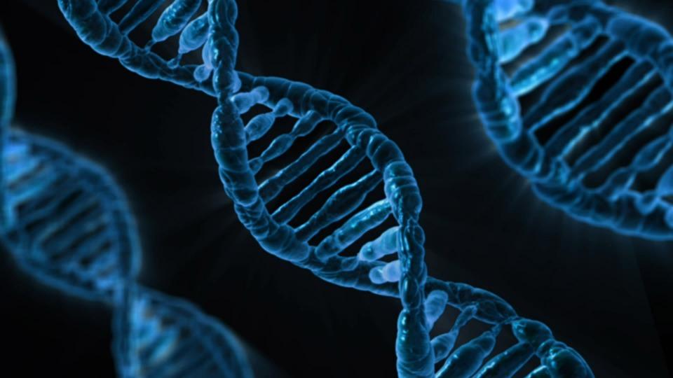 Ученые обнаружили новые способы продления жизни