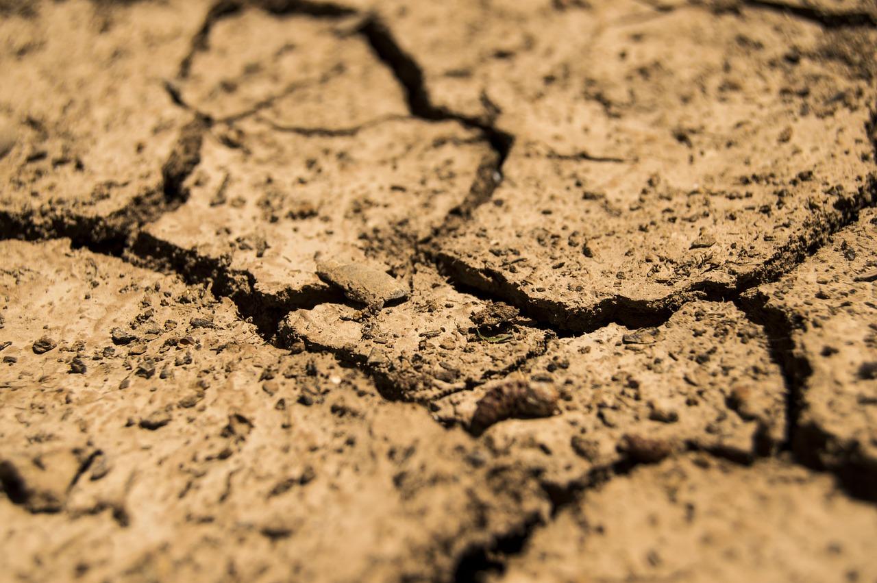 Из-за засухи водохранилище в Севастополе обмелело более чем в два раза — на сколько хватит запасов воды