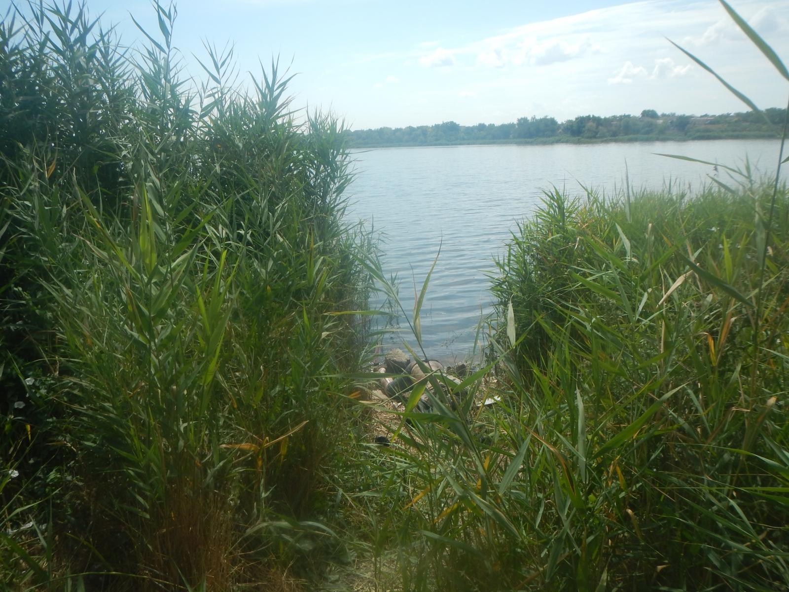 Жителю Белгорода вынесли приговор за заказное убийство крымчанина