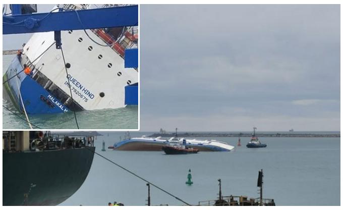 В Черном море в результате крушения грузового корабля утонуло 14000 овец
