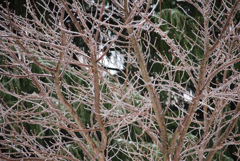 Первый день зимы «ударит» по Крыму дождями, ветром и мокрым снегом