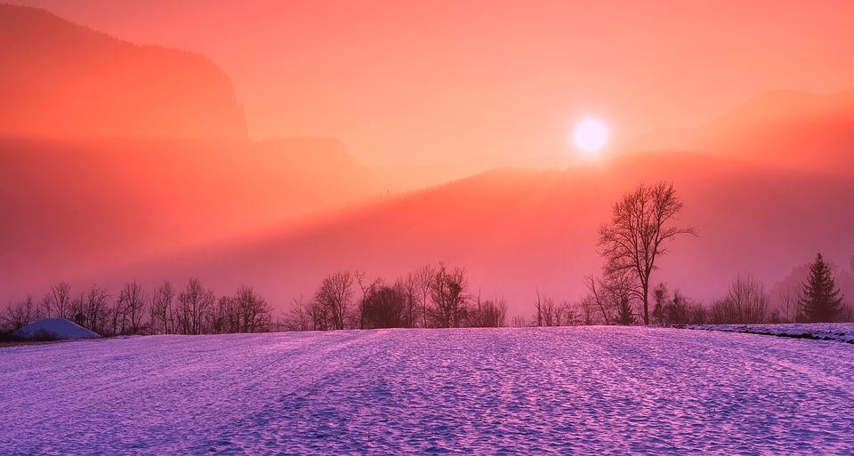 Россиянам прогнозируют аномальную «вишневую» зиму