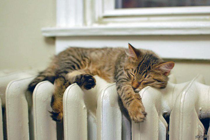 С нового года севастопольцы смогут круглосуточно сообщать о проблемах с отоплением