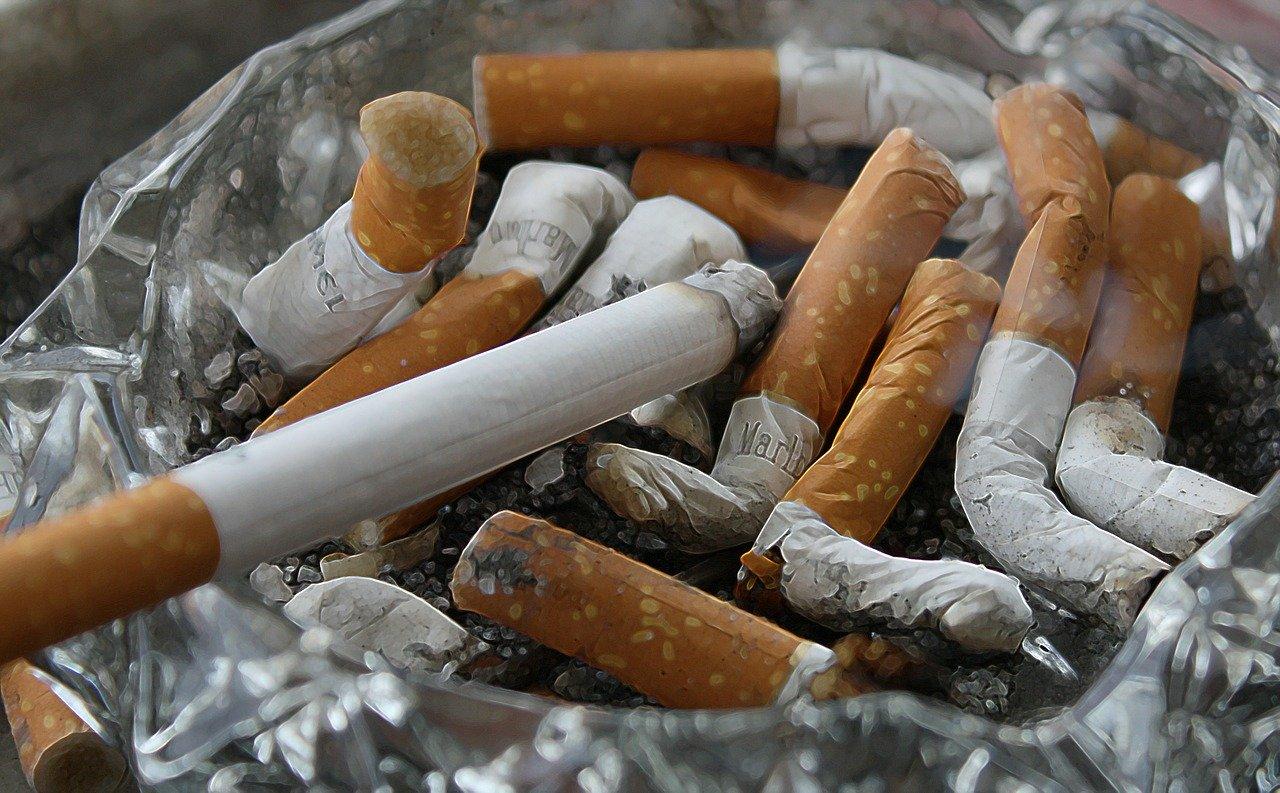 Назван овощ, способный восстановить легкие курильщика