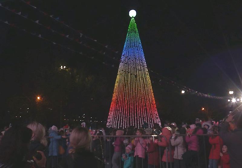 Севастопольская елка торжественно зажгла свои огни