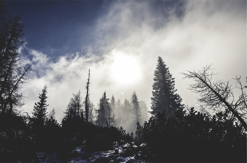 Ночью мороз, днем прохладно и сухо: прогноз погоды в Крыму на 5 – 7 декабря