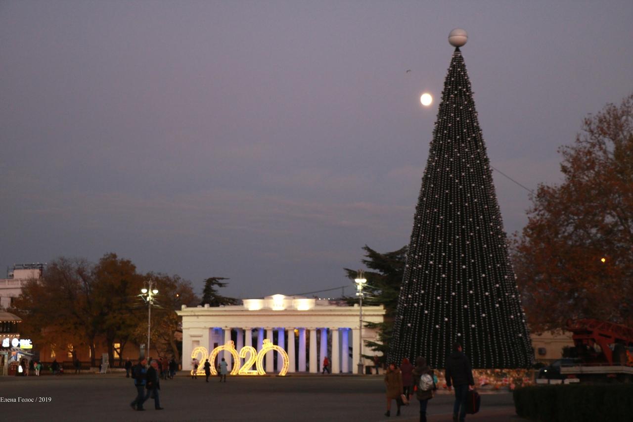 Названа дата открытия главной городской елки в Севастополе