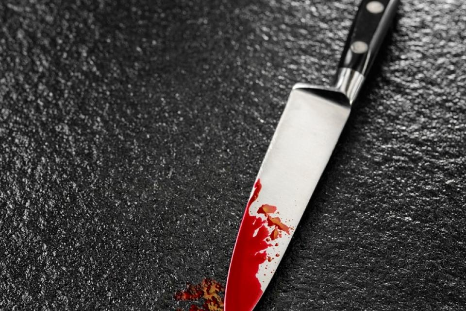 Около 65 ударов ножом: мужчина хладнокровно зарезал жену и тещу из-за замечания