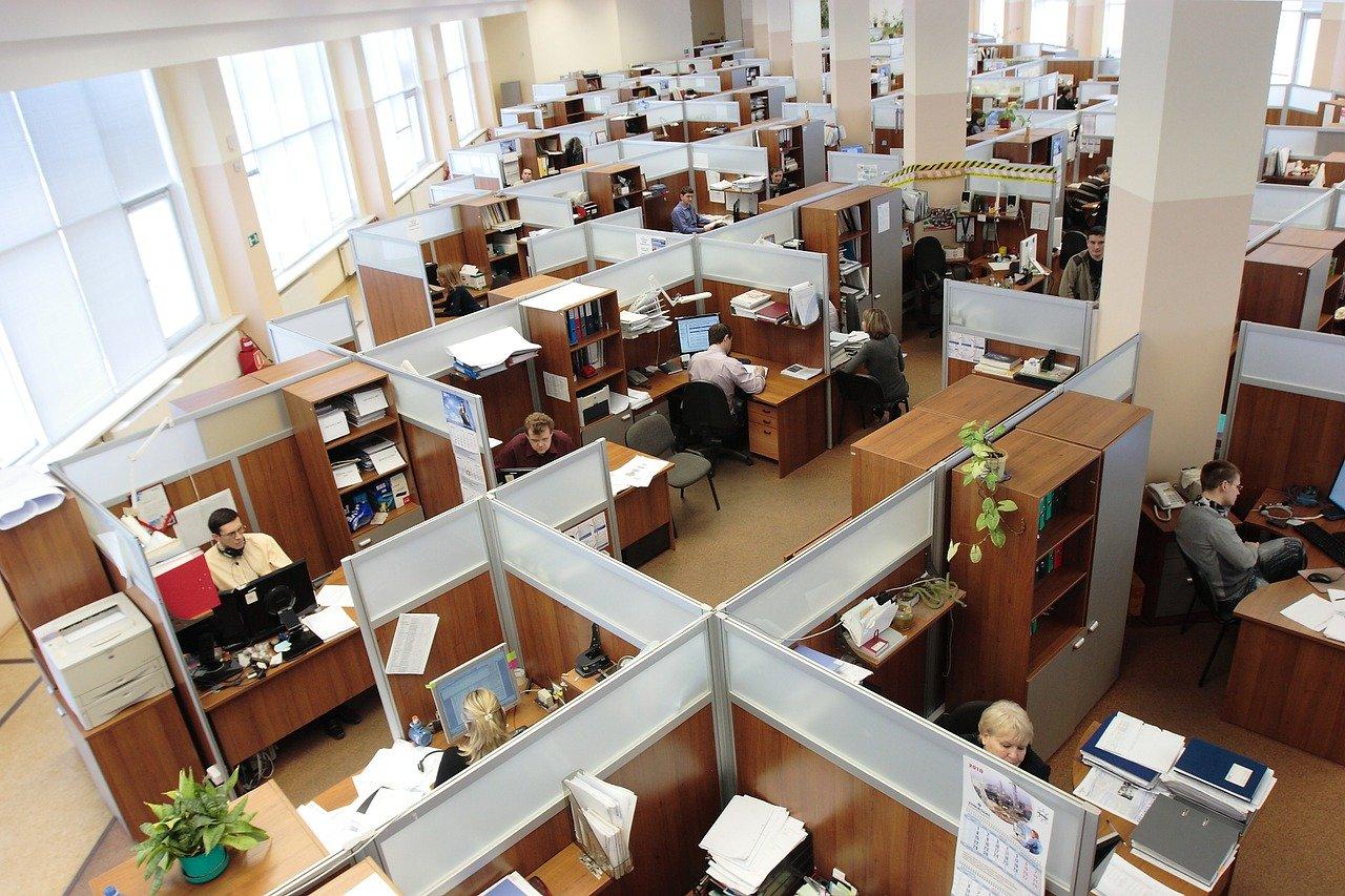 Западные психологи заявили о пользе мата в работе