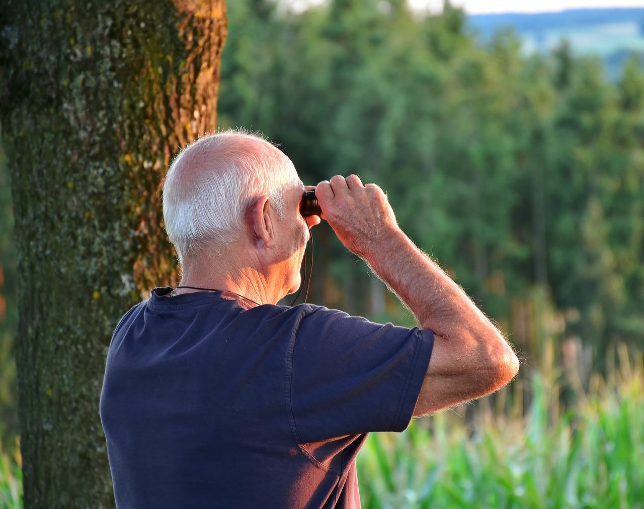 Кому и на сколько повысят пенсии в 2020 году