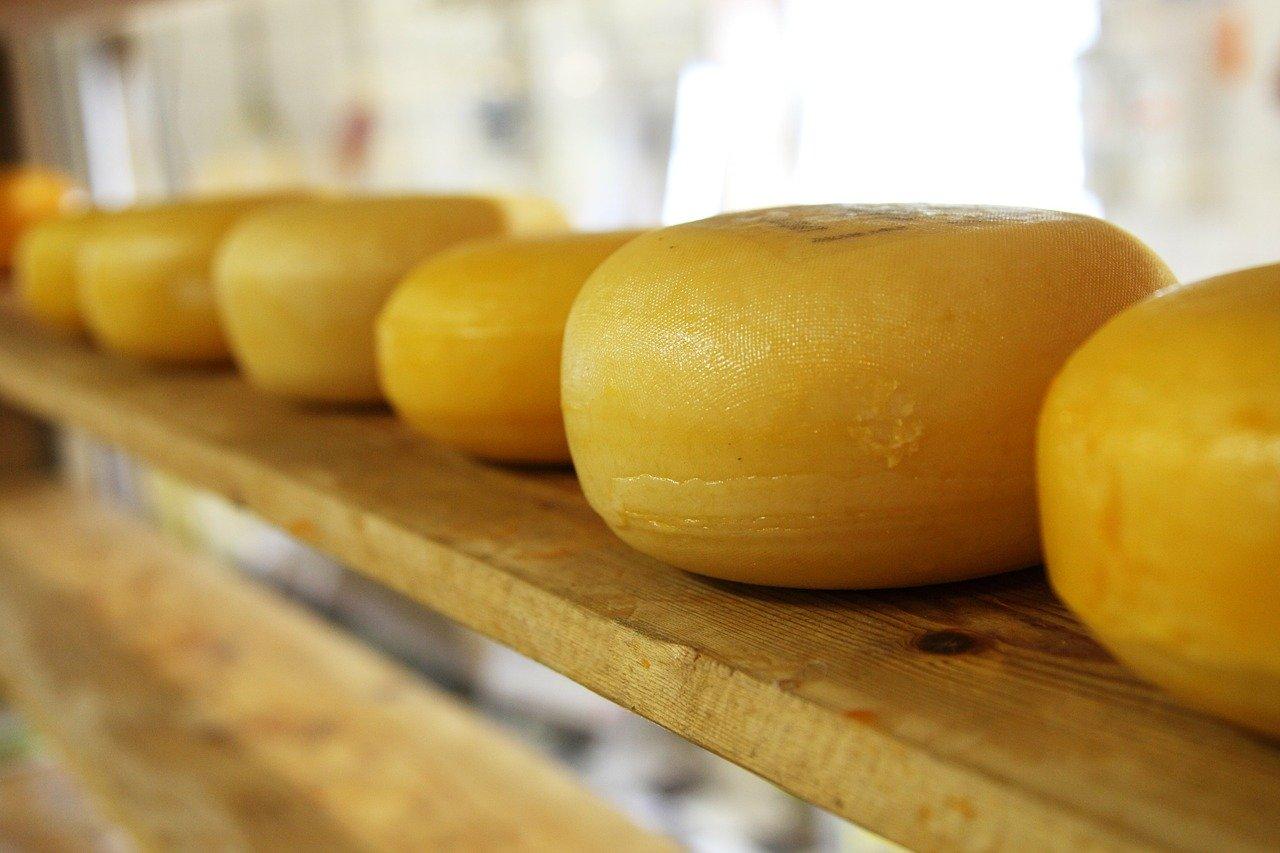 выпускать сыр