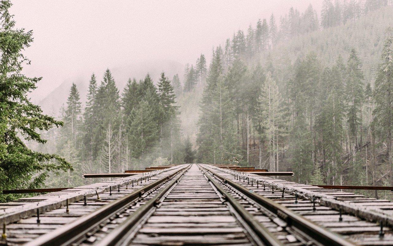 Названы самые популярные страны для путешествий из России на поезде