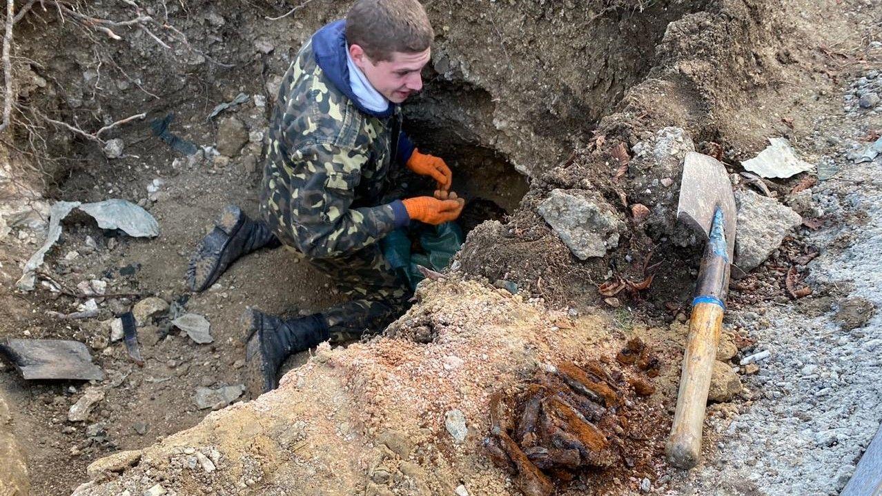 Останки трех красноармейцев нашли при реконструкции площади Ушакова в Севастополе