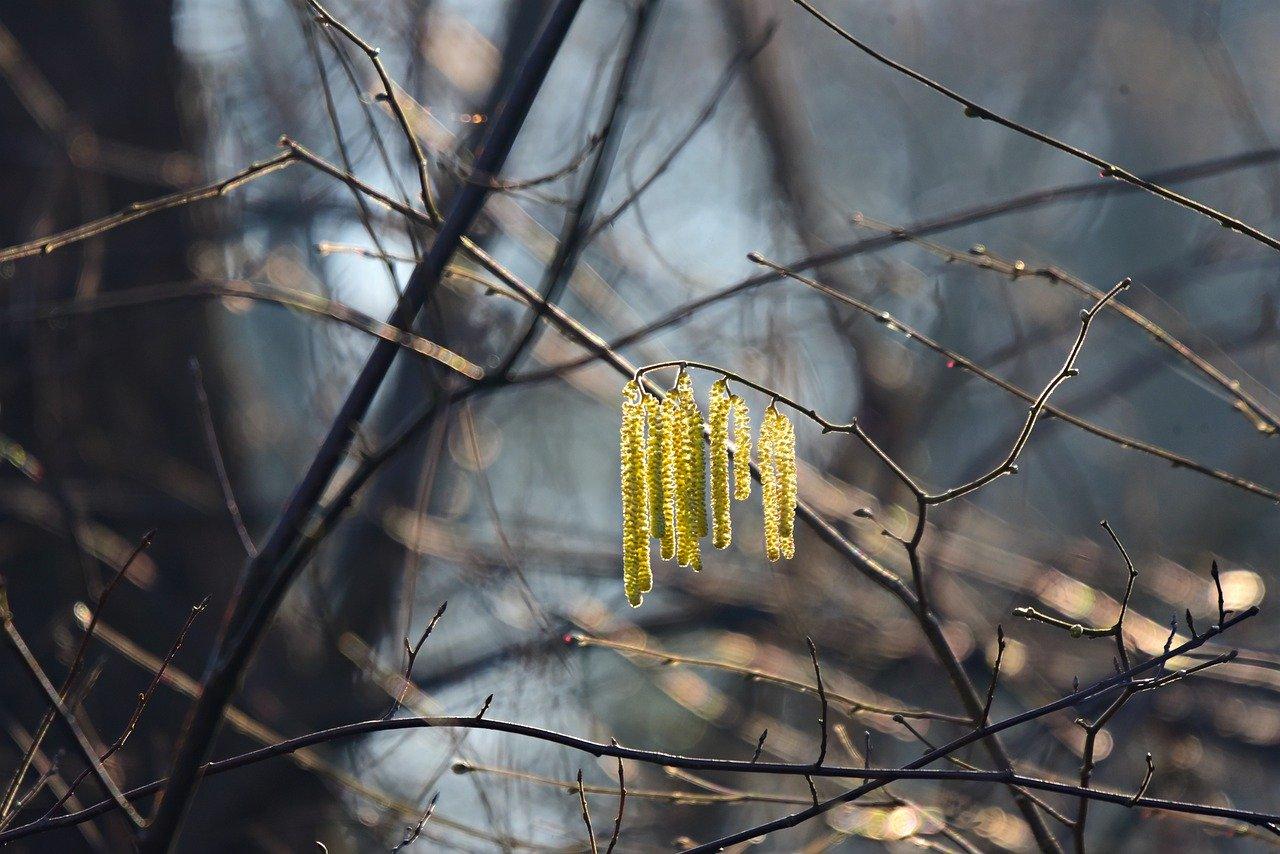 Синоптики рассказали о погоде в Крыму 20 – 22 февраля