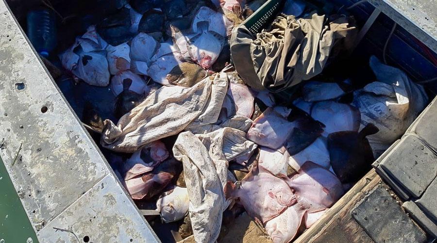 Четверых украинских браконьеров арестовали в Крыму на 10 суток