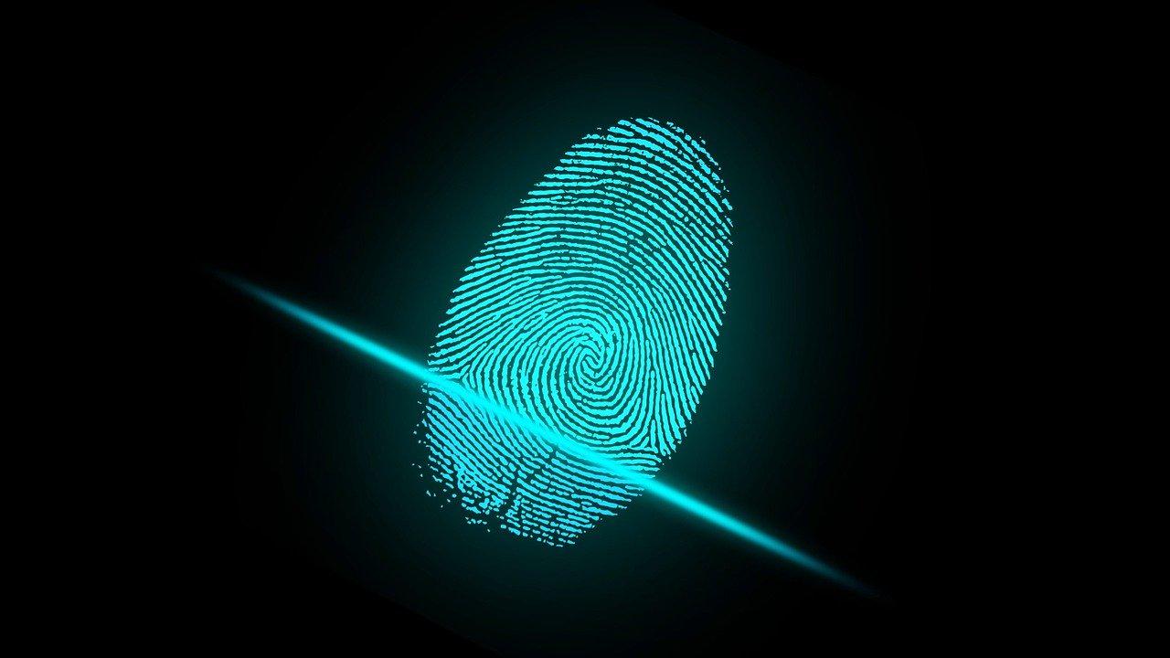 Частный детектив нашел в Ялте труп пропавшего петербуржца в окружении странных записок