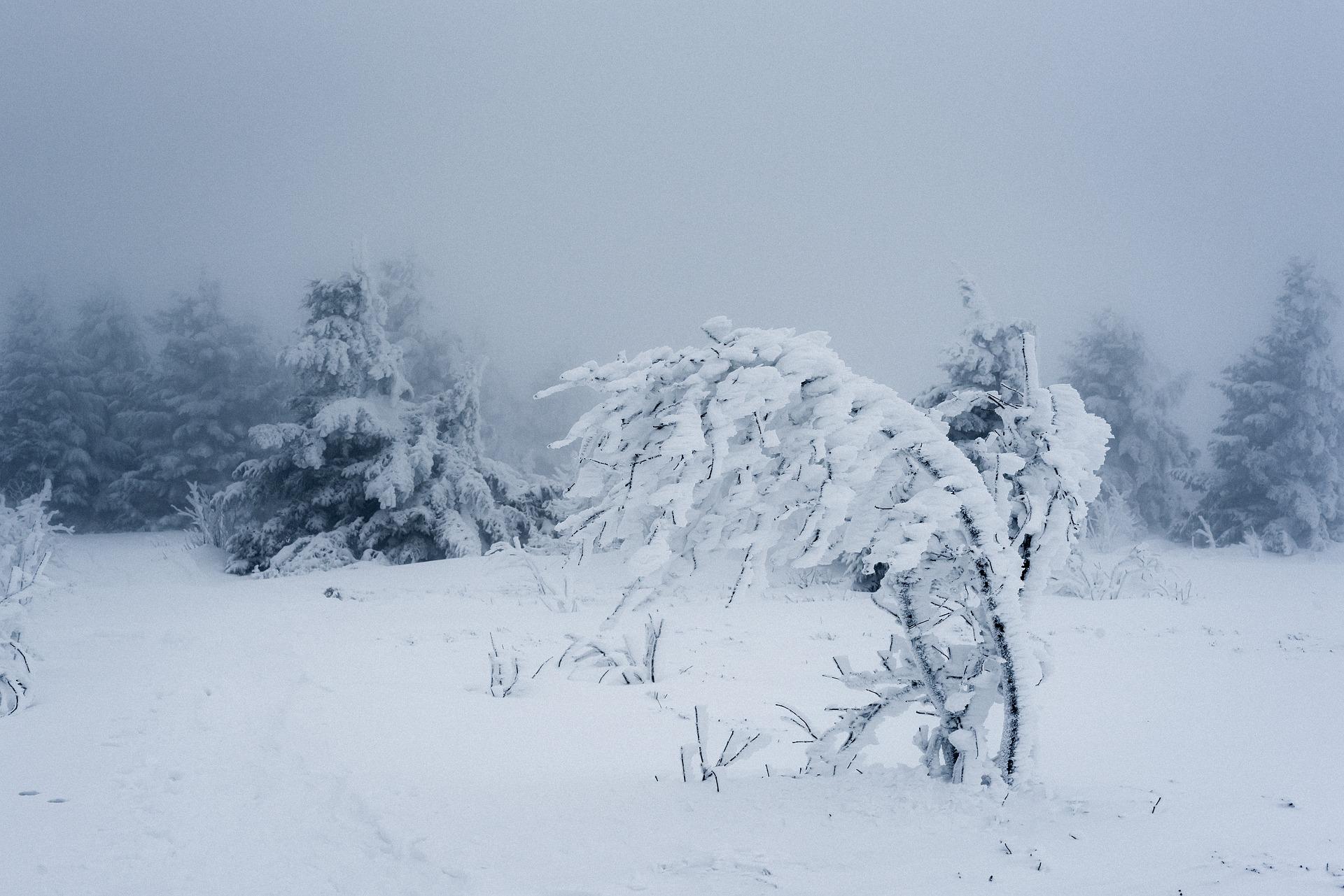 На Севастополь надвигаются морозы и снег