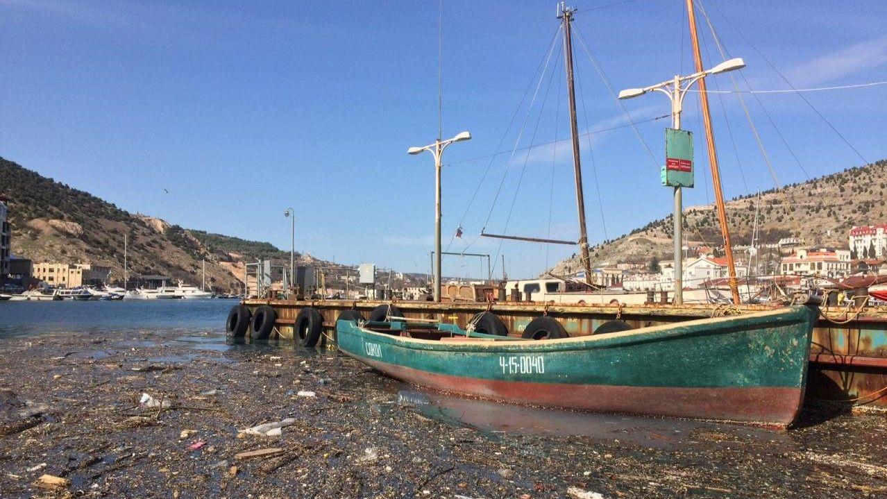 В Севастополе закупят оборудование для уборки мусора в море