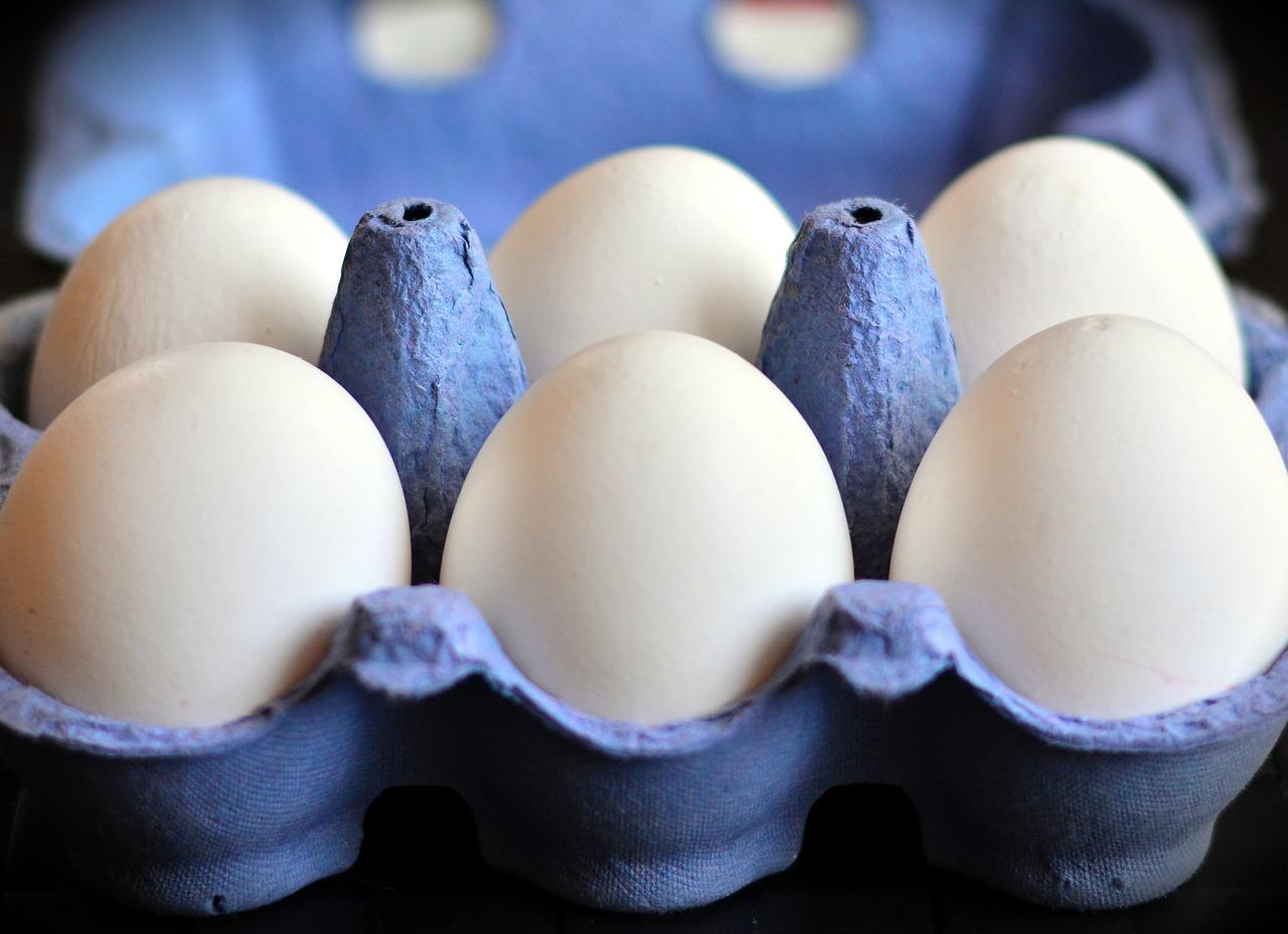 Медики определились, сколько яиц можно съедать без вреда для здоровья