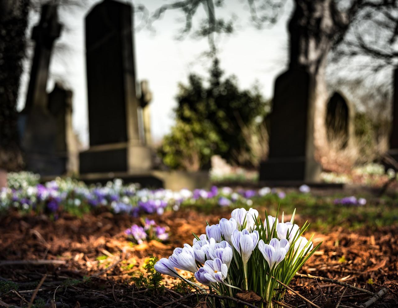 В Севастополе неизвестные осквернили 200 могил