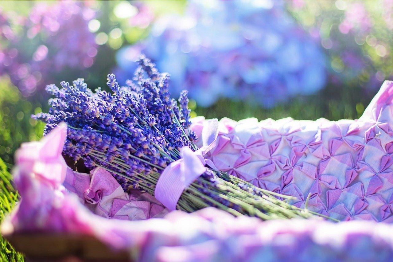 «Крымская роза» выпустит почти 30 тысяч антисептиков с лавандой