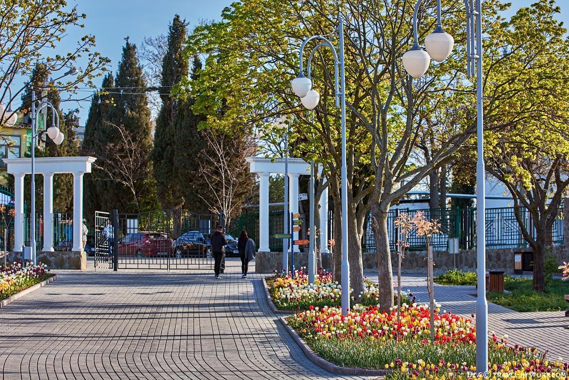 Парки и скверы Севастополя отремонтируют за полмиллиарда рублей