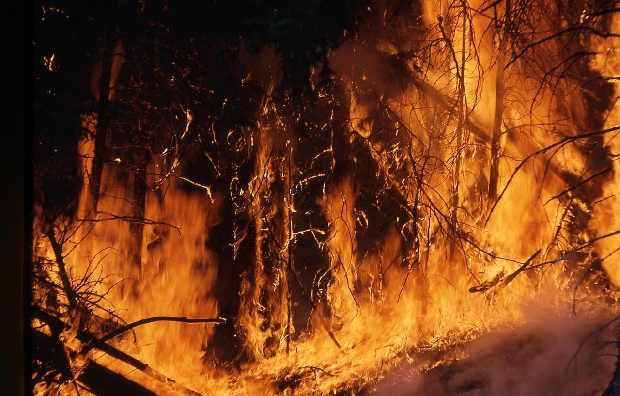В урочище Уч-Кош в Ялте горит лес