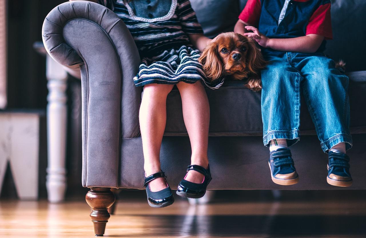 Когда в Севастополе начнут выплачивать пособия на детей от 3 до 7 лет