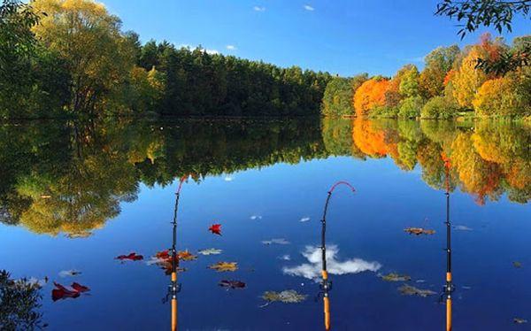 Депутатов Бубнову и Горелова не пустили в бизнес на озере?