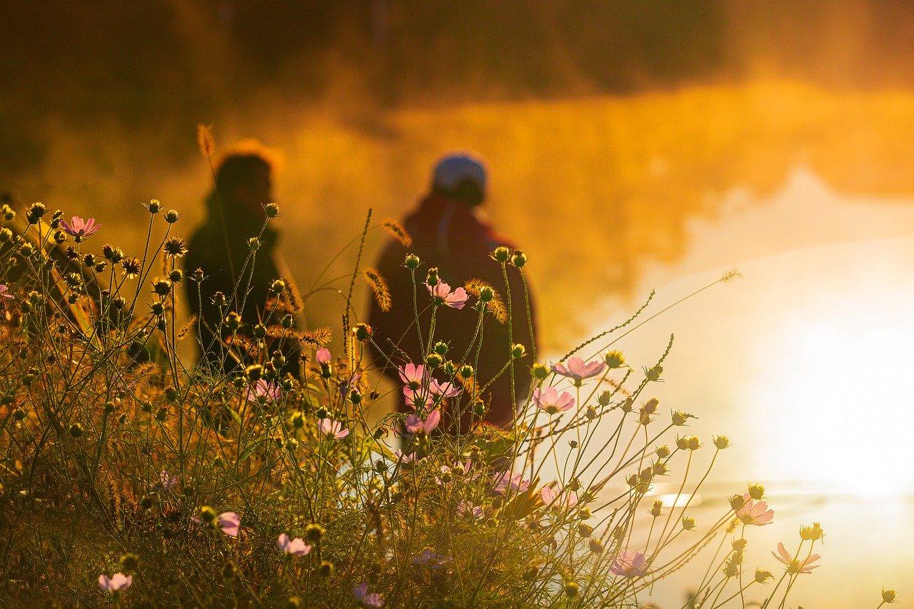 В Крыму установится теплая погода без осадков (прогноз на 17 — 19 мая)