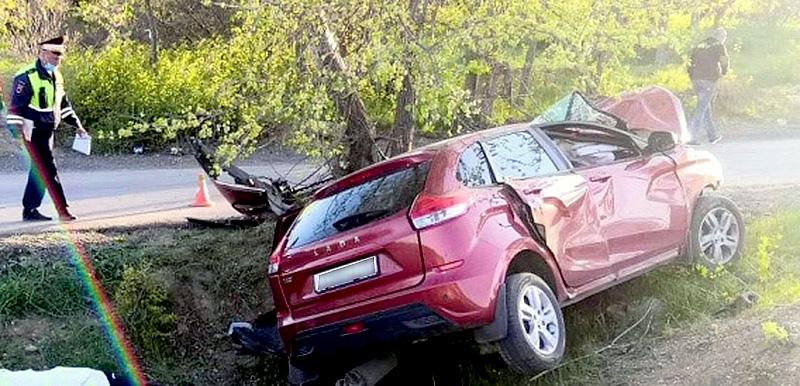 В Севастополе женщина на авто врезалась в дерево — погиб пассажир