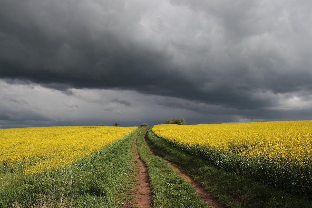 В Крыму с начала недели испортится погода — прогноз