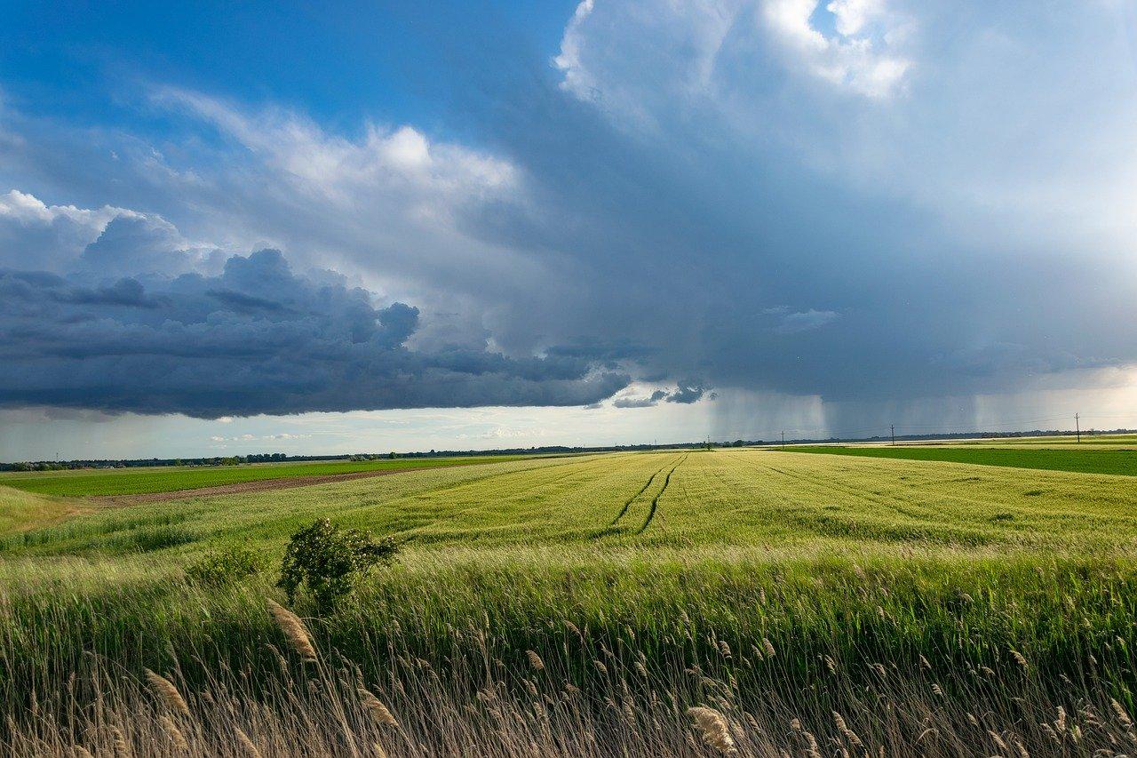 Тепло останется только на Урале: Россию ждет резкое похолодание 1 июня