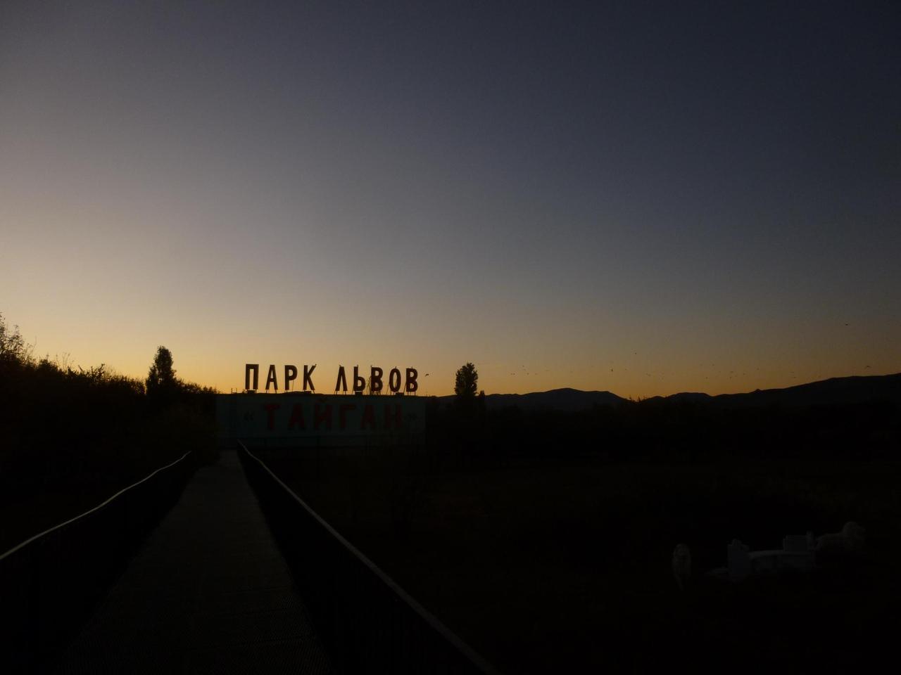 Названа дата открытия парка «Тайган» в Крыму
