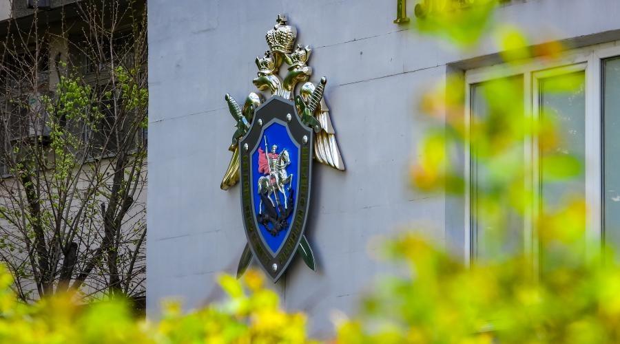 Сотрудники системы профилактики попали под следствие из-за убийства шестилетней девочки в Крыму