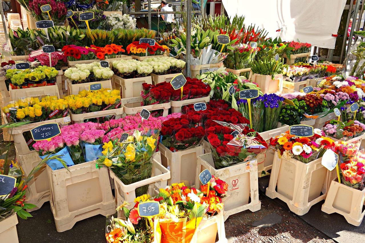 Торги на размещение НТО в Севастополе проведут в электронном виде