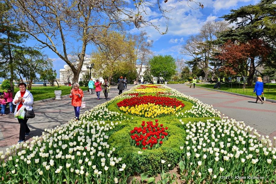 В Севастополе ко Дню города высадят более 230 видов растений и запустят фонтаны