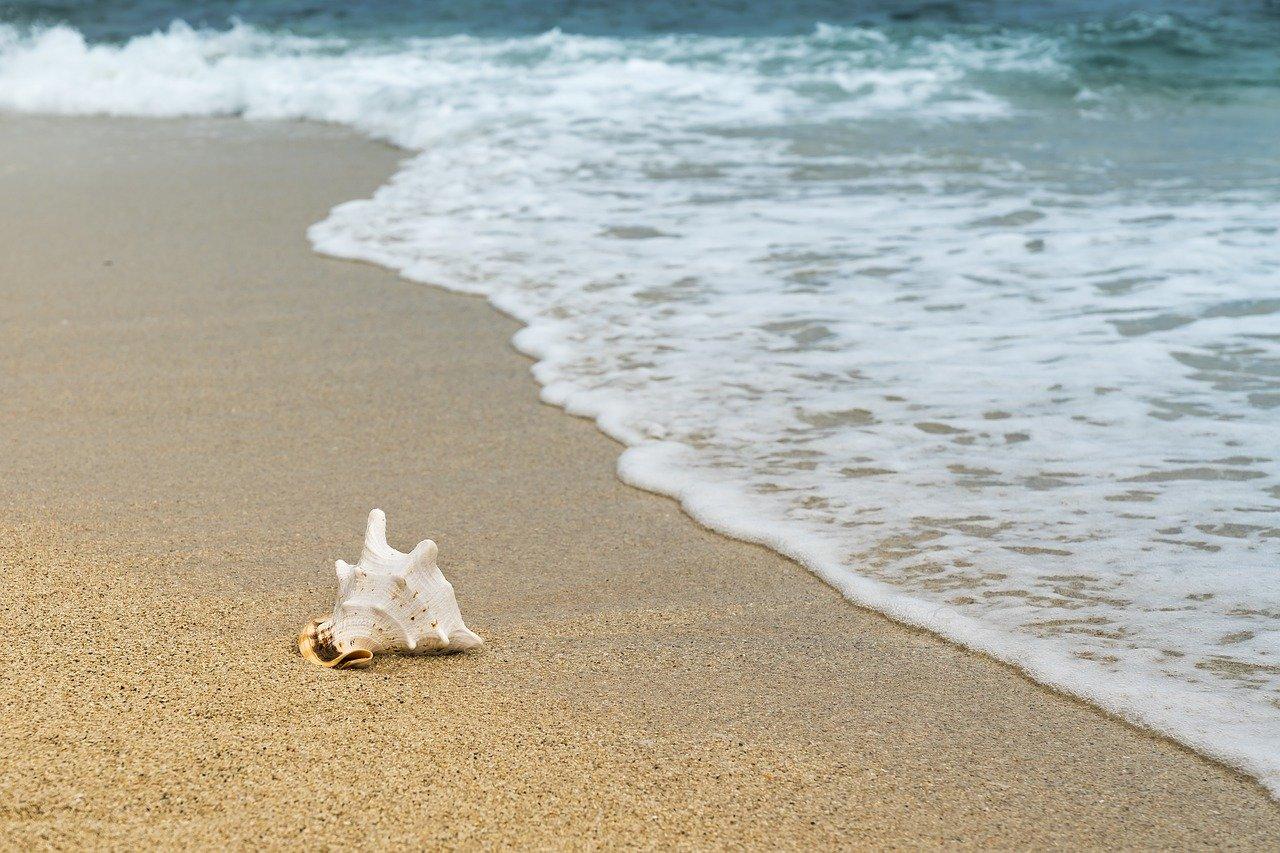 Пляжный сезон в Севастополе стартует 15 июня