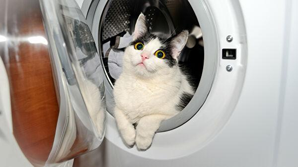 Севастополец «угнал» у соседа стиральную машину