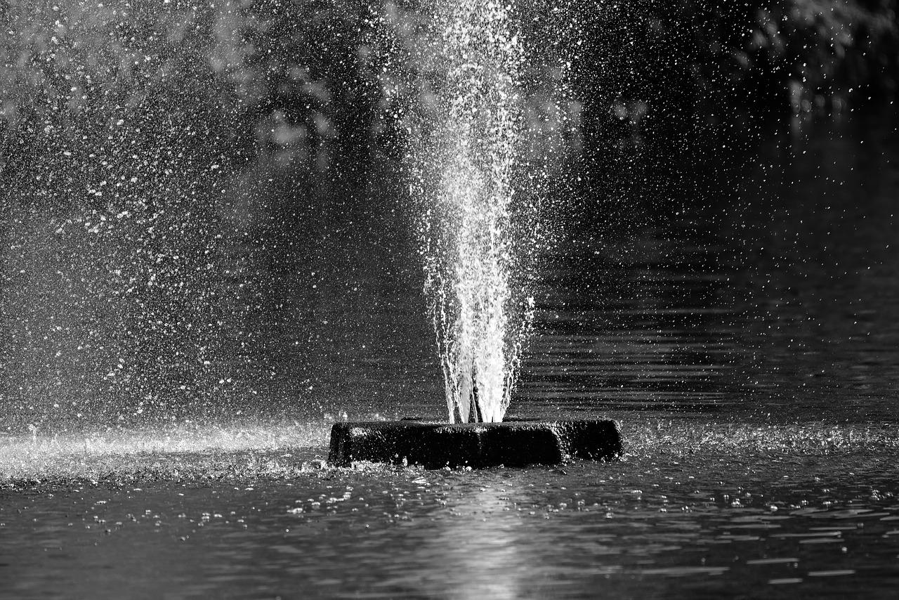 Почему в Симферополе нельзя купаться в фонтанах, несмотря на жару