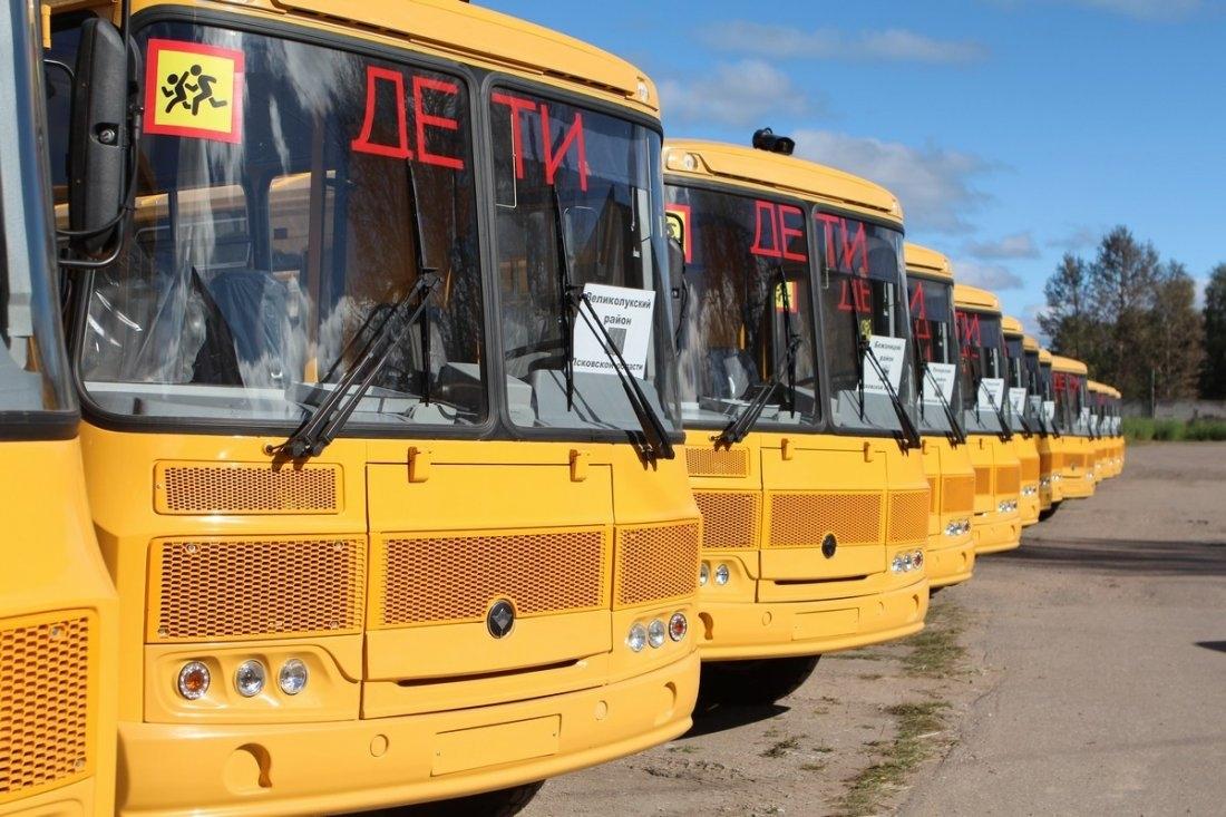В России на закупку школьных автобусов выделили пять миллиардов рублей