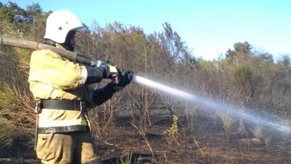В Бахчисарайском районе горел лес